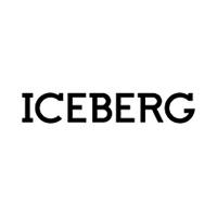 Iceberg internetist