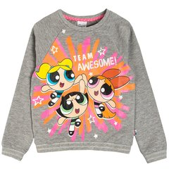 Cool Club кофта Power Puff Girls, LCG1512331