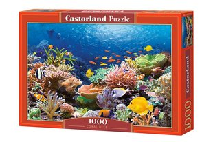 Pusle Puzzle Castorland Coral Reef Fishes, 1000 tk