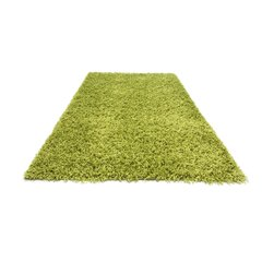 Ковер Shaggy Light Green, 160x220 см