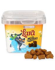 Maiustused kassidele Versele Laga Crunchy Denta, 75 g