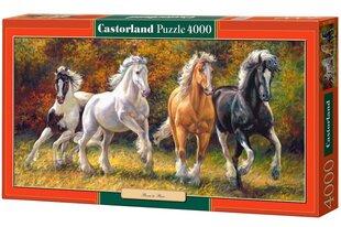 Puzzle Castorland Born to Run, 4000