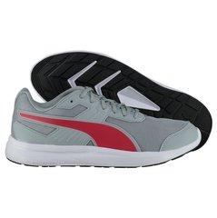 Мужская спортивная обувь Puma Escaper Mesh