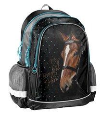 Рюкзак Paso Horse, 17-081KO