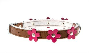 Nahast koerte kaelarihm Amibelle pruun roosade lilledega, M