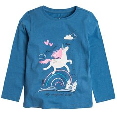 Tüdrukute pikkade varrukatega pluus Cool Club CCG1710997 hind ja info | Tüdrukute riided | kaup24.ee