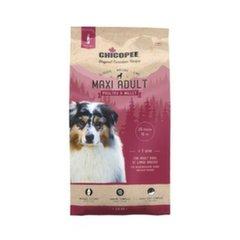 Kuivtoit suurtele koeratõugudele Chicopee CNL Poultry & Millet, 2 kg hind ja info | Kuivtoit koertele | kaup24.ee