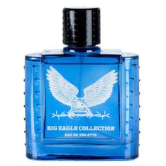 Tualettvesi Real Time Big Eagle Collection Blue EDT meestele 100 ml