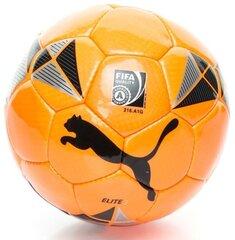 Jalgpall Puma