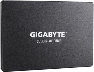 Gigabyte GP-GSTFS31256GTND
