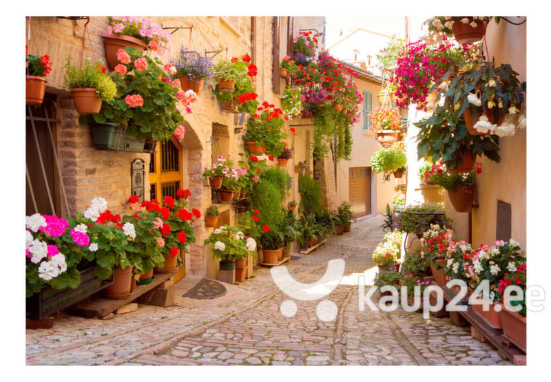 Fototapeet - The Alley in Spello (Italy) tagasiside