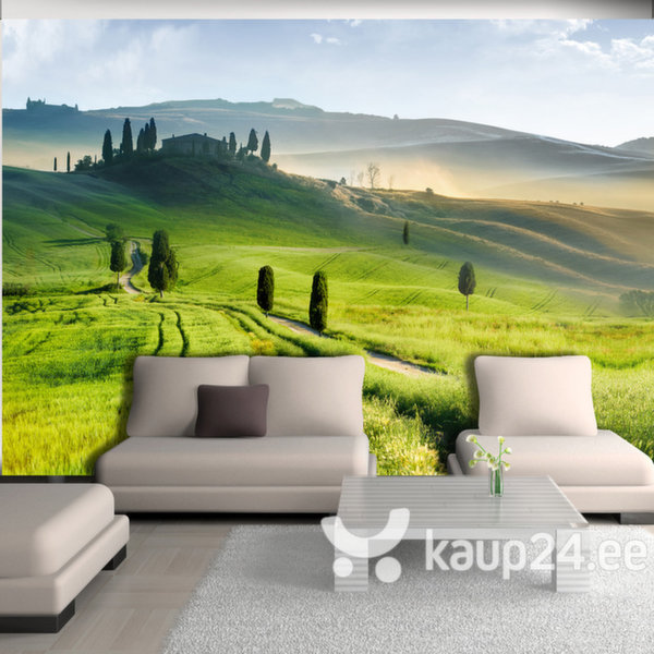 Fototapeet - Morning in the countryside
