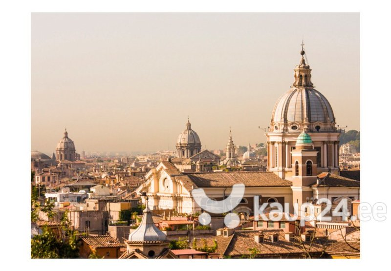 Fototapeet - Rome - bird's eye view