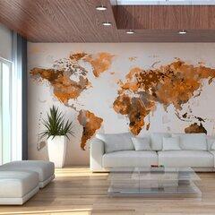 Fototapeet - World in brown shades