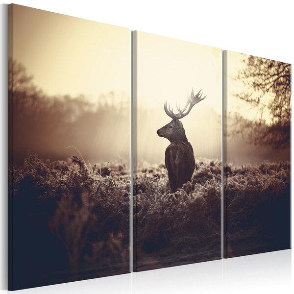 Maal - Lurking Deer I