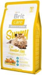 Brit Care Cat Sunny 7кг цена и информация | Сухой корм для кошек | kaup24.ee