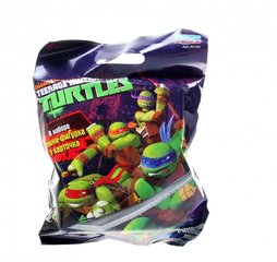 Ninja kilpkonna kuju Teenage Mutant Ninja Turtles