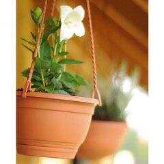 Lillepott AGRO TERRACOTTA, erinevad suurused