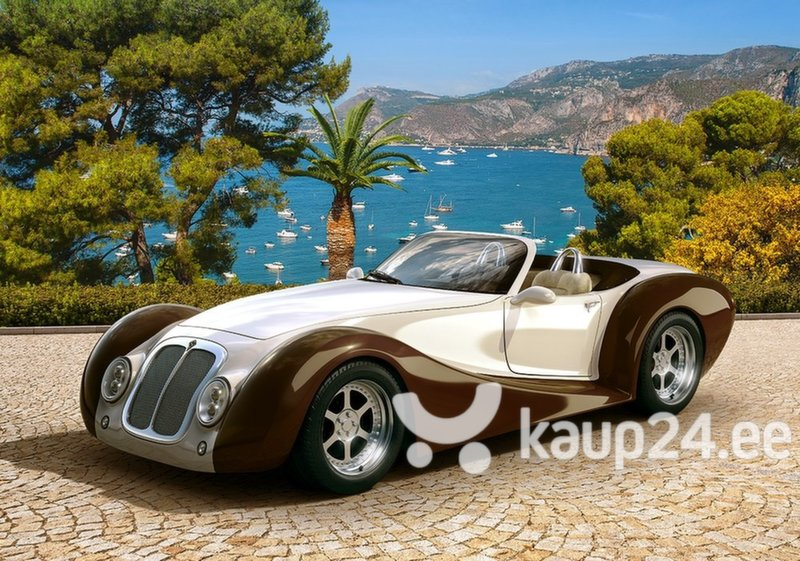 Pusle Castorland Roadster in Riviera, 500 detaili hind