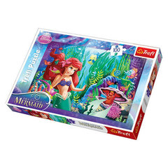 Puzzle Ariell, 100 osa
