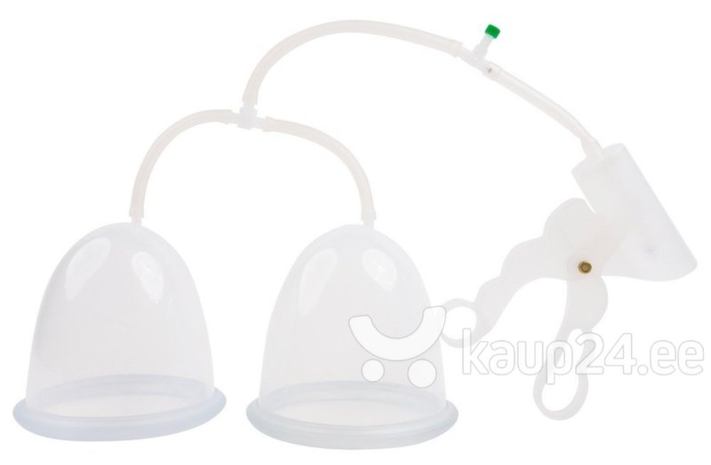 Rinnapump Frohle BP006 Duo hind