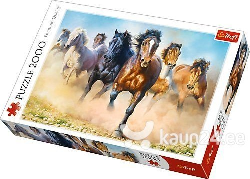 Pusle Trefl Horses, 2000-osaline