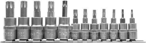 """Võtmete komplekt Torx 1/4"""" 3/8"""" T8-T55 Yato (YT-04331), 12 tk"""