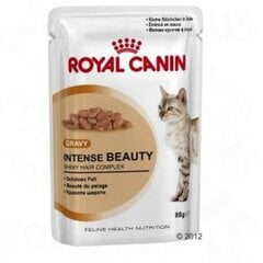 Konserv kassidele Royal Canin Intense Beauty in Gravy Pouch 12x85 g