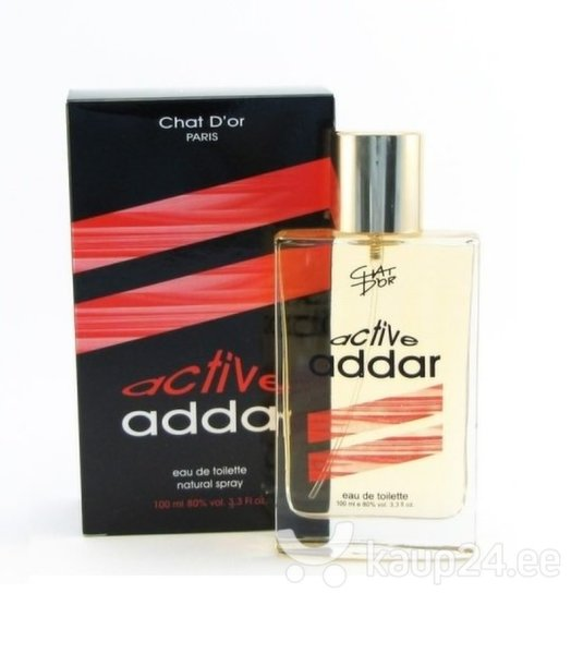 Tualettvesi Chat D'or Active Addar EDT meestele 100 ml