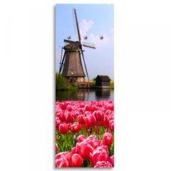 3D seinanagi Tulips 1