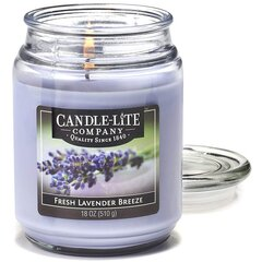 Lõhnaküünal Candle-lite Everyday Fresh Lavender Breeze