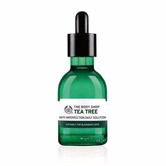 Teepuuõli The Body Shop Daily Solution Tea Tree 50 ml hind ja info | Eeterlikud ja kosmeetilised õlid | kaup24.ee