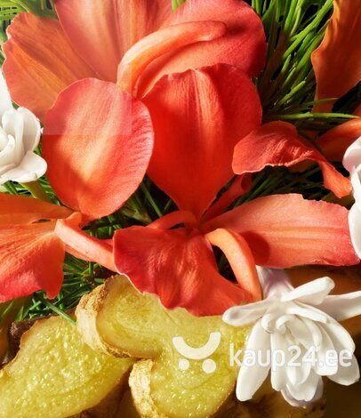 Vedel käteseep Molton Brown Heavenly Gingerlily 300 ml hind