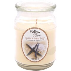 Candle-lite lõhnaküünal Willow Lane Vanilla & Sugar Cane
