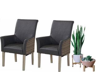 2-tooli komplekt Notio Living Matrix, käetugedega, hall hind ja info | Söögitoolid, köögitoolid | kaup24.ee