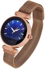 Умные часы Garett Women Lisa, Gold Steel цена и информация | Смарт-часы (smartwatch) | kaup24.ee