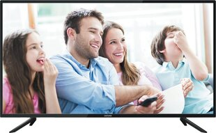 Denver LED-2470 цена и информация | Телевизоры | kaup24.ee