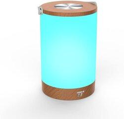 Аккумуляторная настольная лампа, TaoTronics TT-DL033 цена и информация | Аккумуляторная настольная лампа, TaoTronics TT-DL033 | kaup24.ee