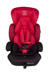 Turvatool BabyGo - Protect