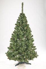Jõulupuu Liza käbidega, 2.2 m hind ja info | Jõulupuu Liza käbidega, 2.2 m | kaup24.ee