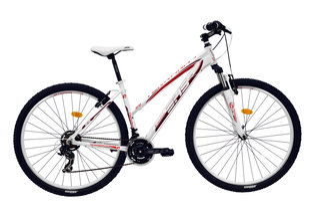 Naiste maastikujalgratas Terrana 2922 DHS, valge/punane