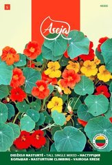 Suur mungalill /Nasturtium Climbing/ Tall single mixed, ASEJA, 4g, 48000( 5 )