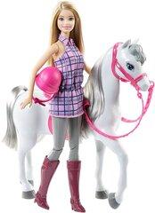 Nukk Barbie Doll And Horse DHB68 hind ja info | Tüdrukute mänguasjad | kaup24.ee