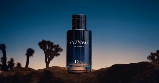 Tualettvesi Christian Dior Sauvage EDT meestele 100 ml