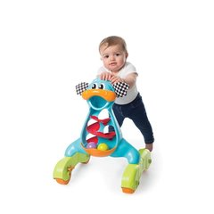 Mänguasi-jalutaja Playgro Dragon Activity Walker, 0185503