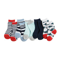Cool Club sokid poistele, 5 paari, CHB2202536-00 hind ja info | Imikute sokid ja sukkpüksid | kaup24.ee