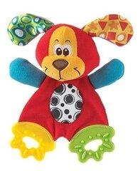 Pehme närimislelu Playgro Pookie, 0183155 цена и информация | Imikute mänguasjad | kaup24.ee