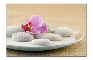 Репродукция Орхидея и камни