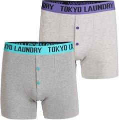 Meeste aluspüksid Tokyo Laundry 2tk, lilla/roheline/hall
