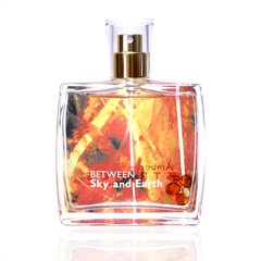 Parfüümvesi Amber Strings Between Sky and Earth EDP meestele 100 ml hind ja info | Meeste parfüümid | kaup24.ee